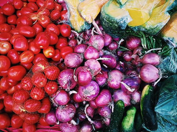 I Jornada Nacional del Profesorado de Nutrición Humana y Dietética