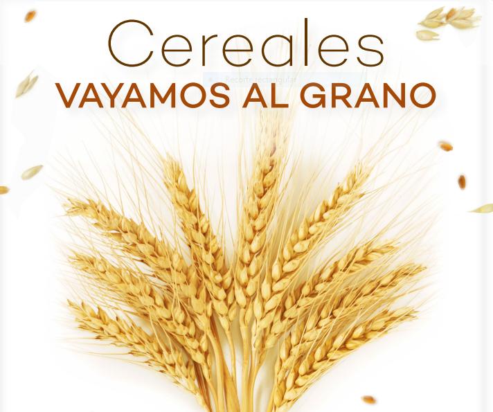 """El Día Nacional de la Nutrición se celebró este año bajo el lema """"Cereales. Vayamos al grano"""""""