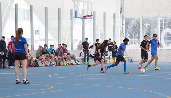 La Asamblea de Estudiantes de CAFYD trabajará con el CSD y el Ministerio en la regulación de las profesiones del deporte