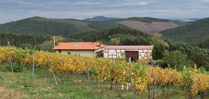 El Ingeniero Técnico Agrícola, Pablo Oria se dirigirá a los estudiantes del grado en IIAAAA para hablar sobre la viticultura en Cantabria